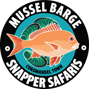 Mussel Barge Snapper Safaris